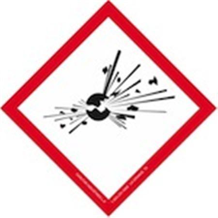 "Globally Harmonized 3/4"" Exploding Bomb Paper Label"