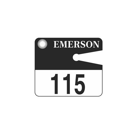 Custom Small Rearview Mirror Tags 3 1/2 x 4
