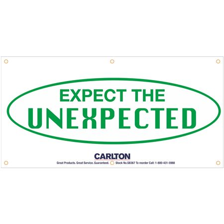 Expect the Unexpected Banner 3'x6' w/Rope