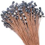 Meter Seals with Copper Wires 12 inches