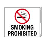 Two-Sided Flanged Signs - Smoking Prohibited with Symbol 10x12